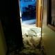 fallen ceiling after water heater leak